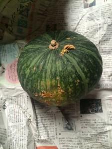 お客様にもっらたかぼちゃ_R