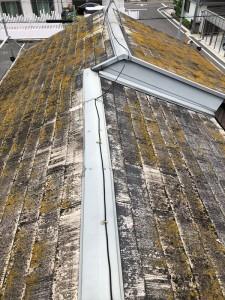 屋根ビフォア1_R